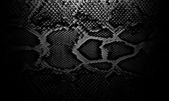 snake_skin-1